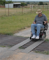 wheelchair guards