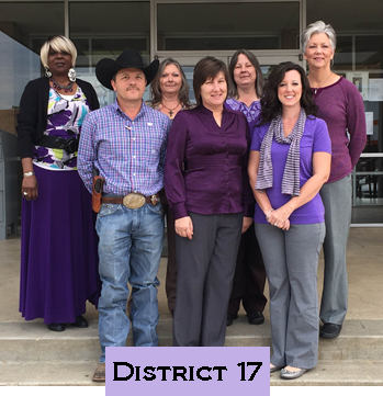 District 17 Domestic Violence