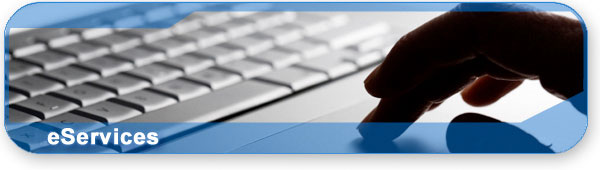 eServices section banner with photo of a person typing on a keyboard.
